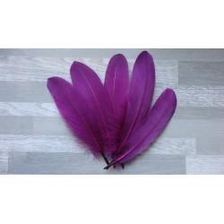 lot de 20 Plumes naturelles d'oie couleur aubergine