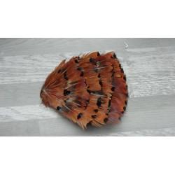 Pad de plumes naturelles de faisan royal