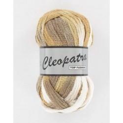 Pelote de laine cleopatra 016 dégradé de beige