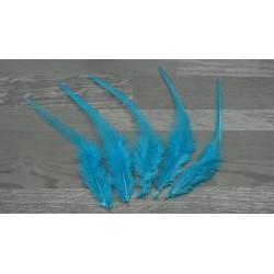 Lot de 20 Plumes naturelles de coq bleu turquoise clair