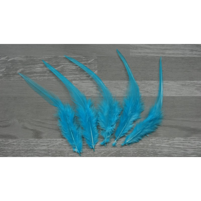 Lot de 50 plumes naturelles de coq bleu turquoise clair for Bleu turquoise clair