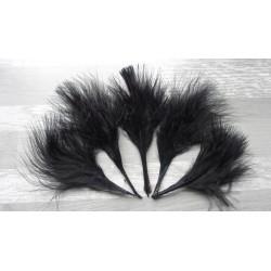 Lot de 20 Plumes Volupte - marabout noir