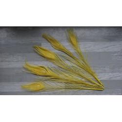 Lot de 5 Plumes de Paon teintées jaune