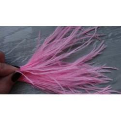 lot de 100 barbules d'autruche teintées rose bonbon