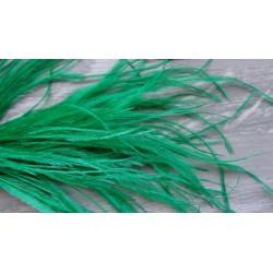 lot de 100 barbules d'autruche teintées vert foncé