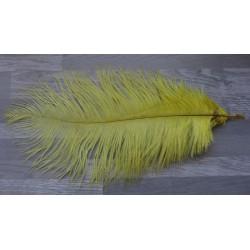 lot de 5 Plumes d'autruche teintées jaune