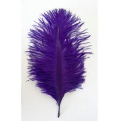 lot de 5 Plumes d'autruche teintées violet