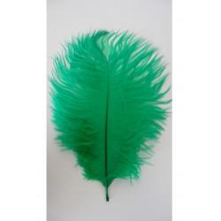 lot de 5 Plumes d'autruche teintées vert foncé