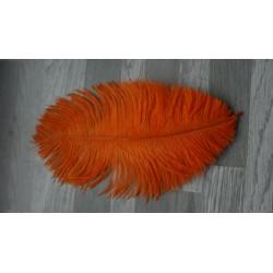 lot de 5 Plumes d'autruche teintées orange
