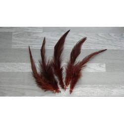 Lot de 50 Plumes naturelles de coq teintées couleur marron foncé
