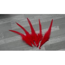 Lot de 50 Plumes de coq teintées de couleur rouge
