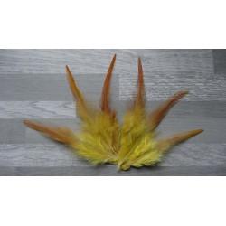 Lot de 50 Plumes de coq flammé teintées de couleur jaune