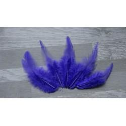 Lot de 50 Plumes de coq violet