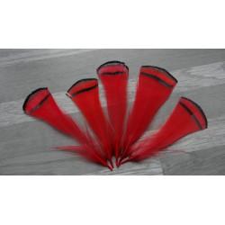 Lot de 10 Plumes de cou de faisan Lady Armherst teintées rouge