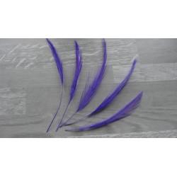 lot de 10 Coq filant teintés violet
