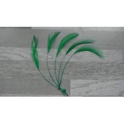 lot de 10 Coq filant teintés vert foncé