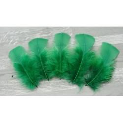 Lot de 20 Plumes de dinde couleur vert emeraude