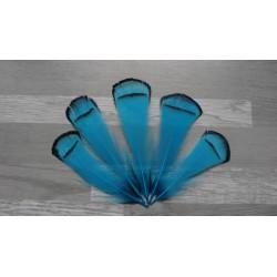 Lot de 10 Plumes de cou de faisan Lady Armherst teintées turquoise