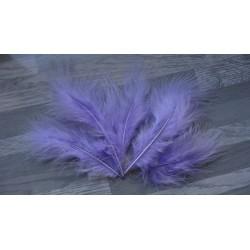 Lot de 10 Plumes Volupte teintées couleur lilas